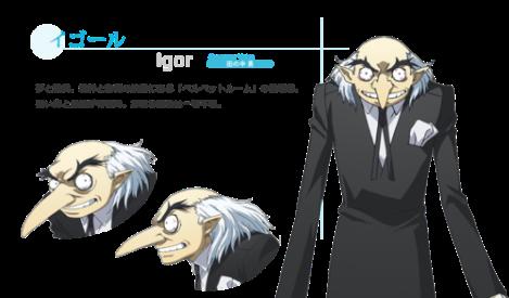 ch_igor